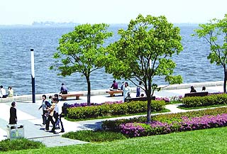 Jinji Lake Waterfront